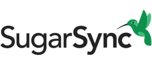 Backup Huge Data with SugarSync with unlimited device access